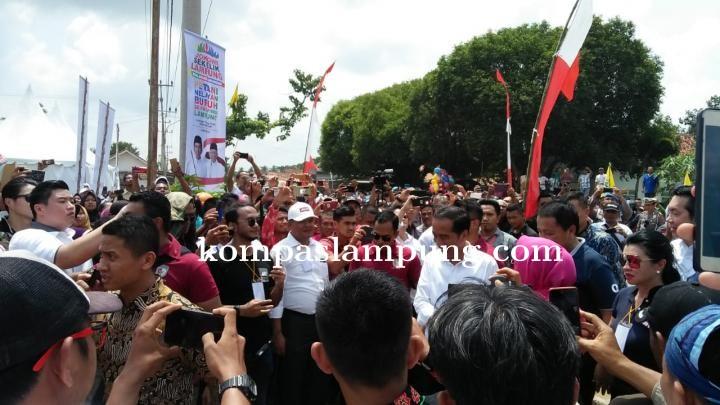 Presiden Jokowi: Jalan Tol Bakter Buka Perekonomian Lampung