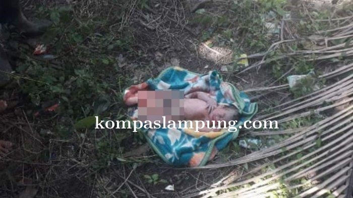 Warga Lampung Utara Geger, Ditemukan Sosok Bayi Berlumuran Darah Dipinggir Sungai