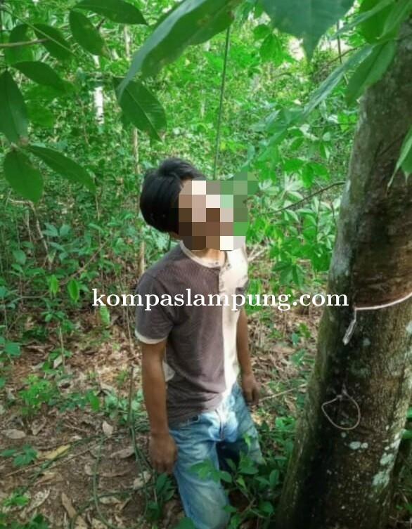 Warga Tiyuh Mekar Jaya Tubaba Geger Ditemukannya Warga Gantung Diri Di Pohon Karet