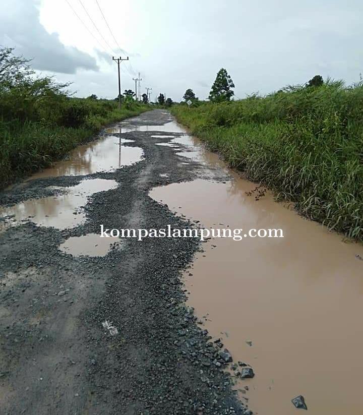 Beberapa Ruas Jalan Poros Di Kec Tanjung Raya Hingga Wiralaga Rusak Dan Berlubang