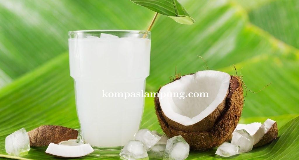 BPOM : Nata De Coco Aman Di Konsumsi Asal Bahan Yang Digunakan Jenis Food Grade