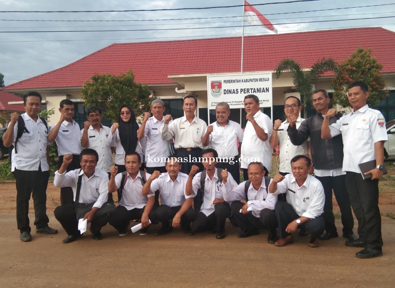 Dinas Pertanian Mesuji Mendorong Petani Mesuji Untuk Mengolah Lahan Ditanami Kacang Koro Pedang