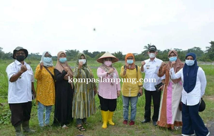 FK KWT Berjaya Bakal Memiliki Agro Park Mini