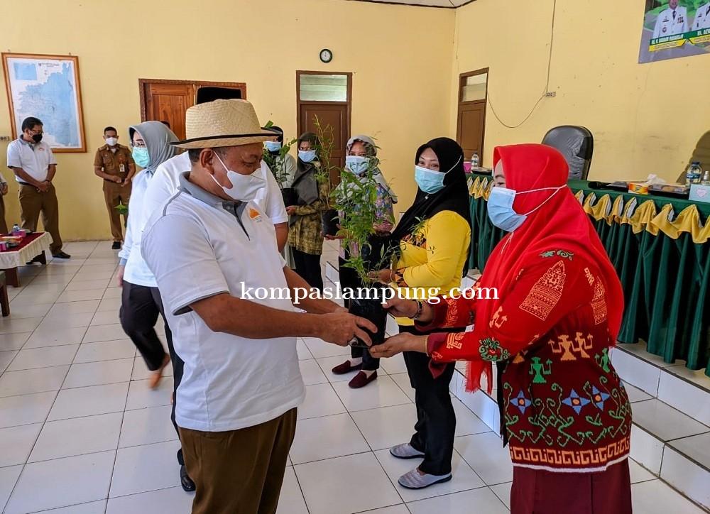 Bupati Lamtim Menyerahkan Bibit Tanaman Holtikultural Dalam Rangka Pemulihan Ekonomi Nasional