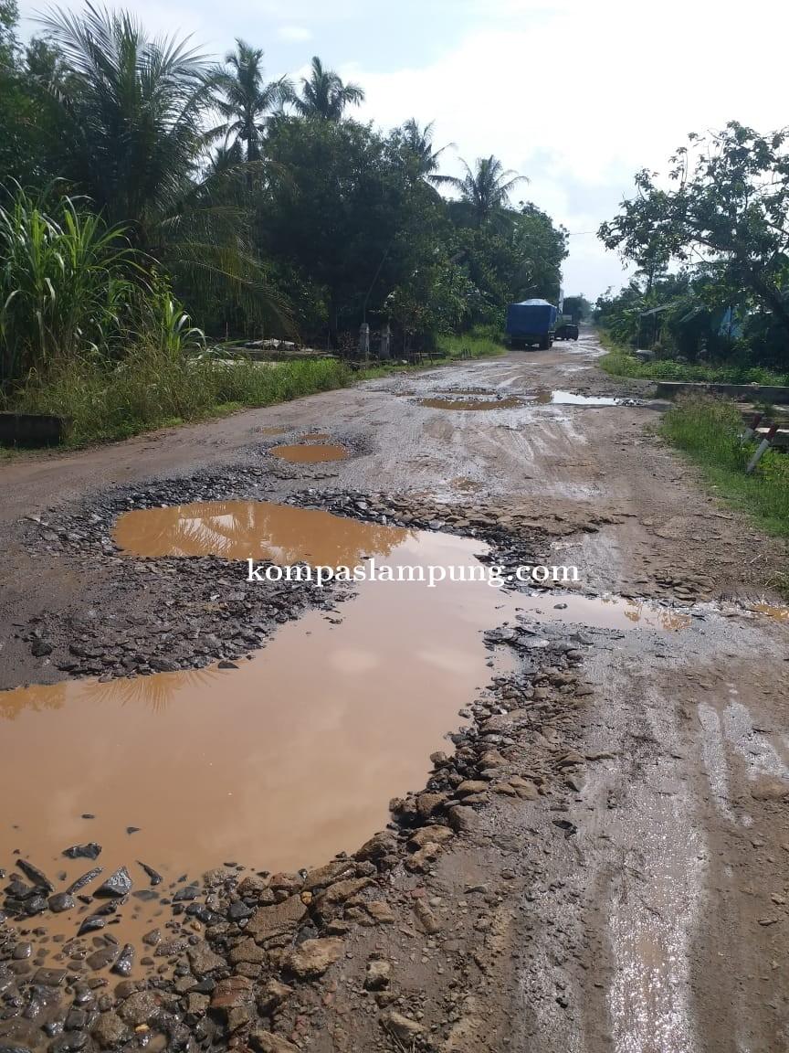 Jalan Milik Provinsi Dan Kabupaten Lamtim, Luput dari Perhatian Pemerintah